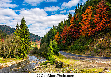 forest river by the road in autumnal countryside - narrow...