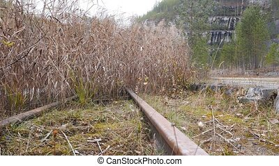 Narrow-gauge railway in the grass. Russia. UltraHD (4K)