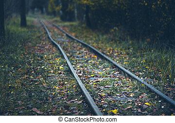narrow gauge railway - rails in the autumn forest