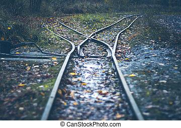narrow gauge railway - railway turnout - rails in the autumn forest