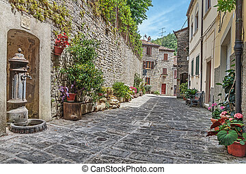 Narrow old cobbled street with flowers in Italy