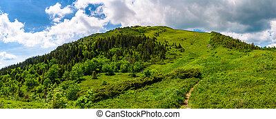 narrow path to the mountain top