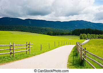 Narrow road passing through a green field in Bavarian Alps.
