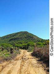 Narrow Rural Muddy Dirt Road in Africa