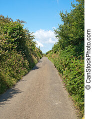 Narrow single lane English countryside road.