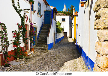 Portuguese City - Narrow Street in the Medieval Portuguese...