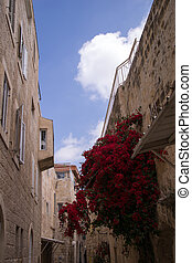 Narrow streets of old city.
