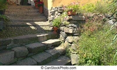Narrow town street at daytime. Green plants and stone...