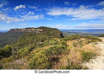Narrowneck Plateau Blue Mountains Australia