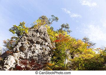 naruko, bergkloof, autumn leaves, in, de, val seizoen