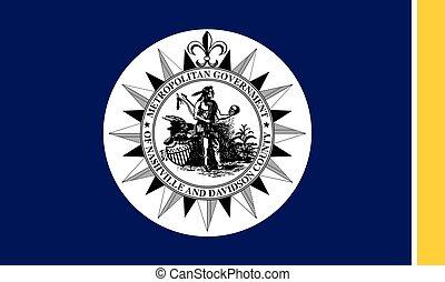 A depiction of the Nashville city flag