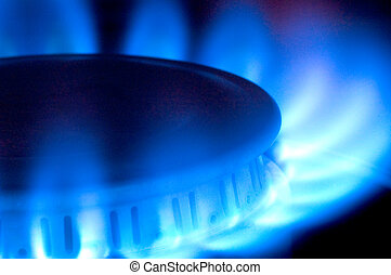 Close-up of a natural gas flame on a stovetop.