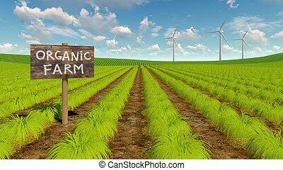 natürlich, eco, turbinen, feld, landwirtschaft, wind
