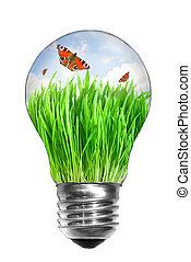 natürlich, energie, concept., glühlampe, mit, sommer, wiese, und, vlinders, innenseite, freigestellt, weiß