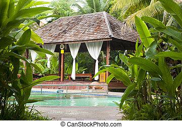 natação, tailandia, piscina, bali, estilo