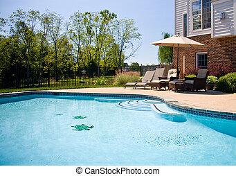 natación, patio, piscina, vista