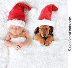 natal, bebê, e, santa, filhote cachorro