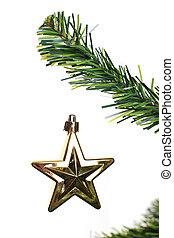 natal, estrela, ornamento, penduradas, de, um, árvore xmas, ramo