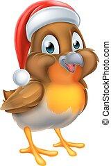 natal, santa, robin, chapéu, pássaro, vermelho