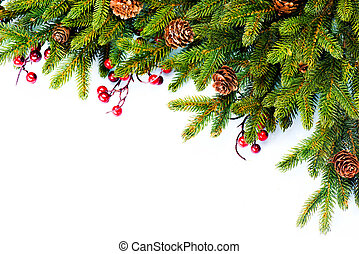 natal., sempre-viva, árvore abeto, borda, desenho