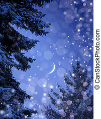 natale, nevoso, foresta, notte