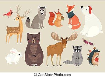 Hand drawn animali foresta illustrazione. gufo set cervo hand