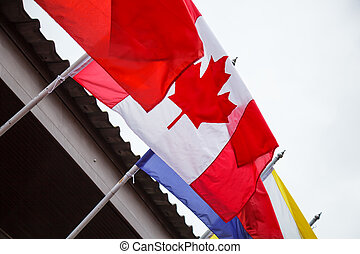 Nation Flag of Canada, Canadian Flag or the Maple Leaf background designs with vertical triband of red (hoist side and fly side) and white (double width) with the red maple leaf centred on white band
