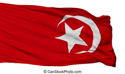 Nation Of Islam Flag Isolated Seamless Loop - Nation Of...