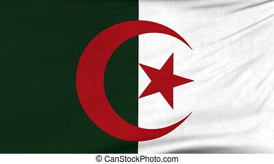 National flag of Algeria flying on the wind - National flag...