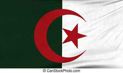 National flag of Algeria flying on the wind - National flag...