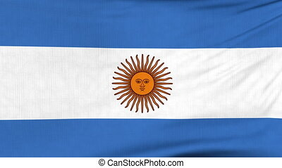 National flag of Argentina flying on the wind
