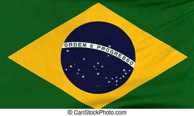National flag of Brazil flying on the wind