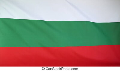 National flag of Bulgaria moving in the wind