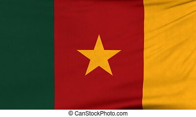 National flag of Cameroon flying on the wind