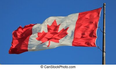 National flag of Canada - The national flag of Canada flying...