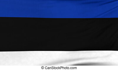 National flag of Estonia flying on the wind - National flag...