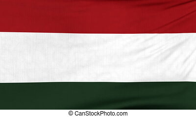 National flag of Hungary flying on the wind