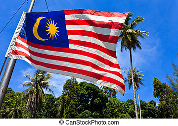 National flag of Malaysia blowing in the wind