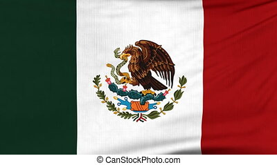 National flag of Mexico flying on the wind