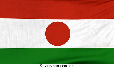 National flag of Niger flying on the wind