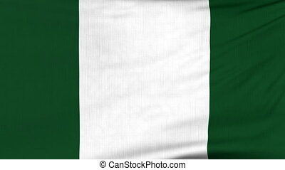 National flag of Nigeria flying on the wind