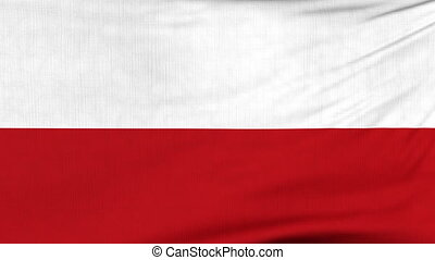 National flag of Poland flying on the wind