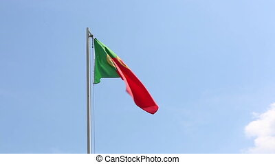 National flag of Portugal on a flagpole in front of blue sky