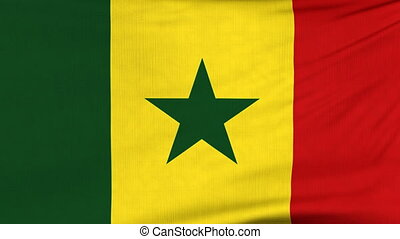 National flag of Senegal flying on the wind