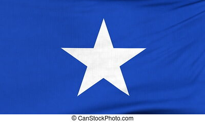 National flag of Somalia flying on the wind