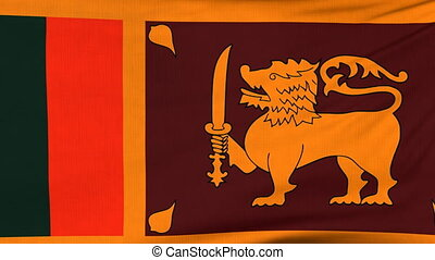 National flag of Sri Lanka flying on the wind
