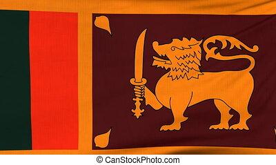 National flag of Sri Lanka flying on the wind