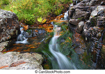 National Forest Creek Cascade