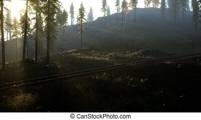National Forest Recreation Area and the fog with railway