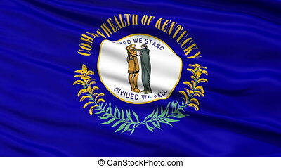 national, haut, kentucky, drapeau ondulant, fin